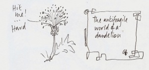 the antifragile world of a dandelion