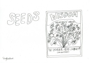 12-seeds